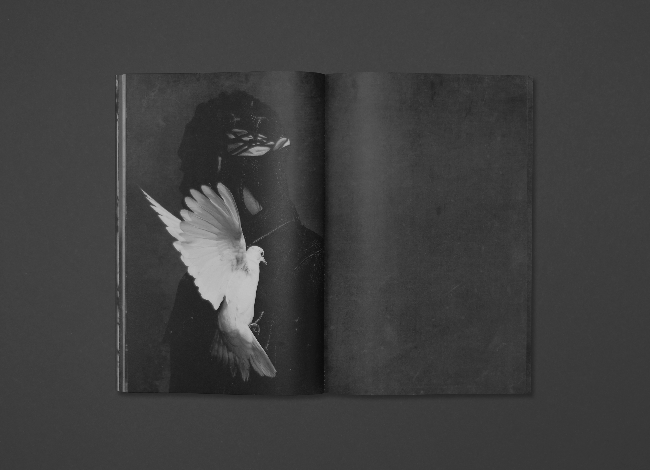 PUSHA_ZINE17